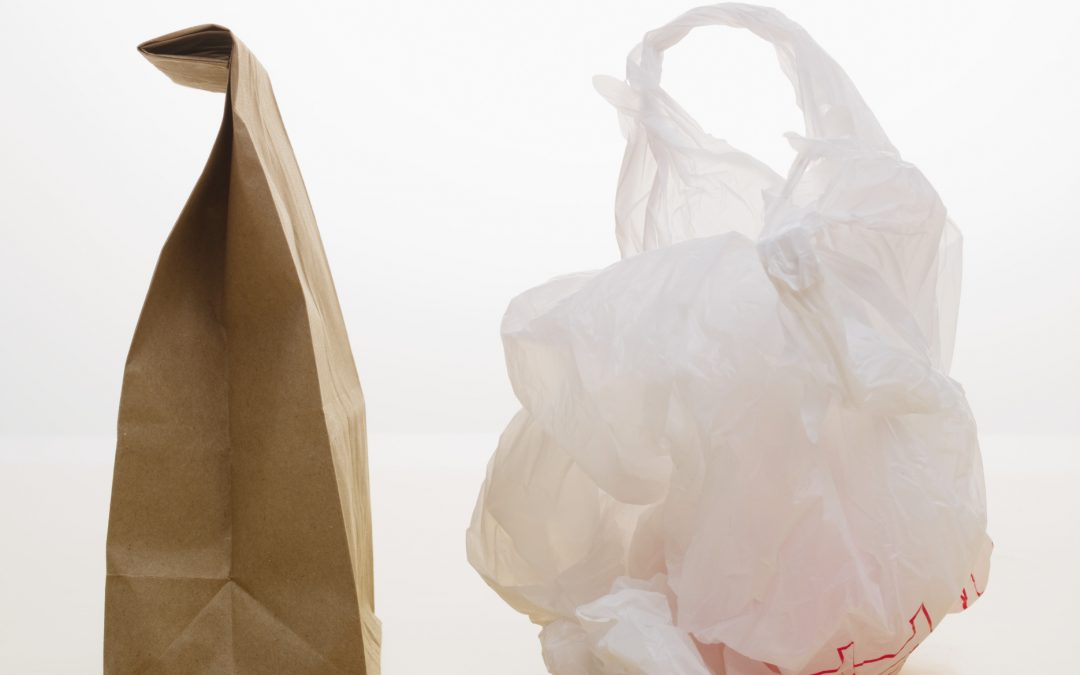 SIMAP 6 – Paper or Plastic?